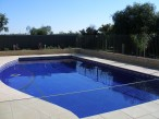 Freeform large family pool